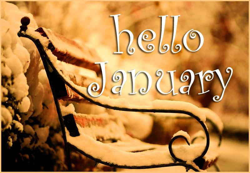 hello-january-snow-bench