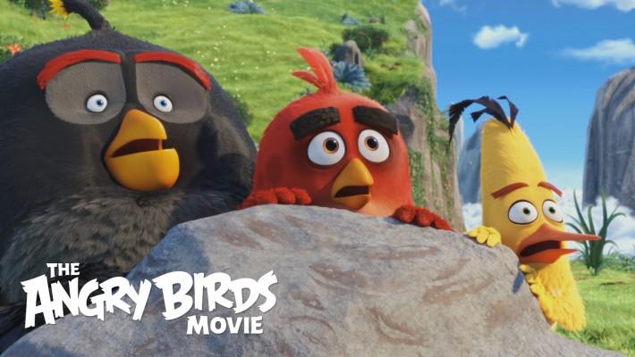 TheAngryBirds(Foto)