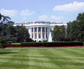 Bela kukja (The White House)