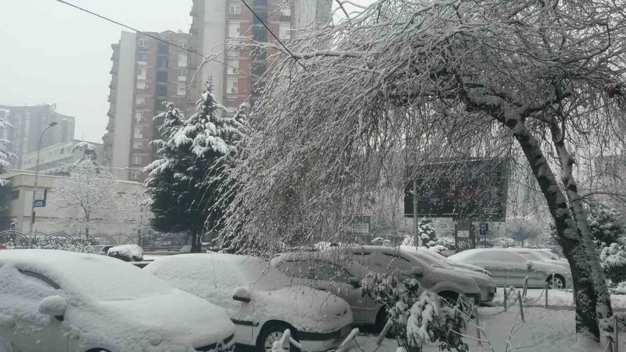 Sneg Filip fotografija