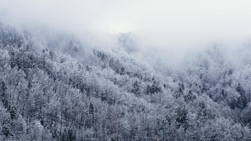 Vremenska prognoza ladno sneg magla